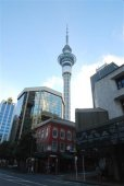 Sky-Tower Auckland